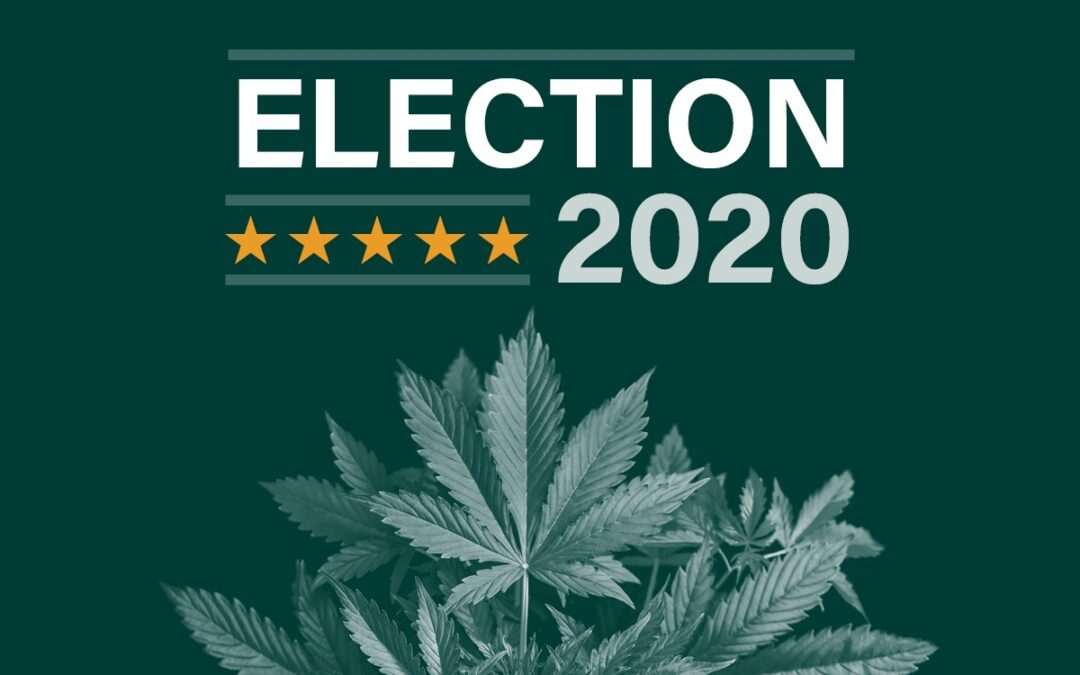 Federal marijuana reform momentum expected to continue despite absence from party conventions