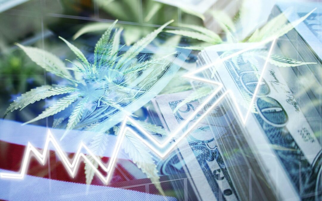Why Marijuana Stocks Aurora Cannabis, Canopy Growth, and Tilray Are Giving Up Much of Monday's Gains