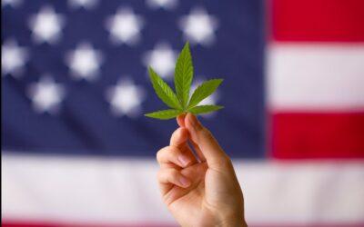 Alabama House Committee Approves Medical Marijuana Legalization Bill Already Passed The Senate