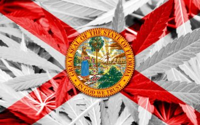 Marijuana MSO Cresco inks $213M all-stock deal to expand into Florida
