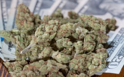 Colorado's Record-Breaking Marijuana Sales Top $2 Billion In 2020