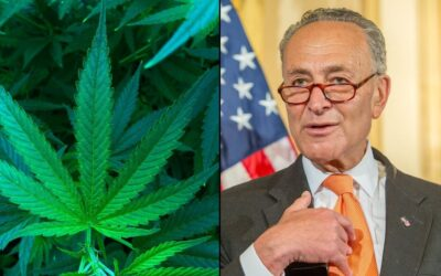 Chuck Schumer Says Federal Marijuana Legalization Is A Priority In Democrats' 'Big, Bold Agenda'
