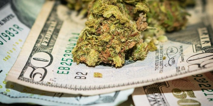 Cannabis Tax Revenue Seeing Higher Numbers in the US