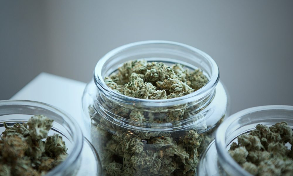 Florida Democratic Candidates For Governor Fight Over Who Supports Marijuana Reform The Most